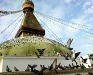 The Great Stupa - Bouda, Nepal