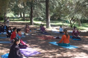 BreathWork and Yoga in Nature!